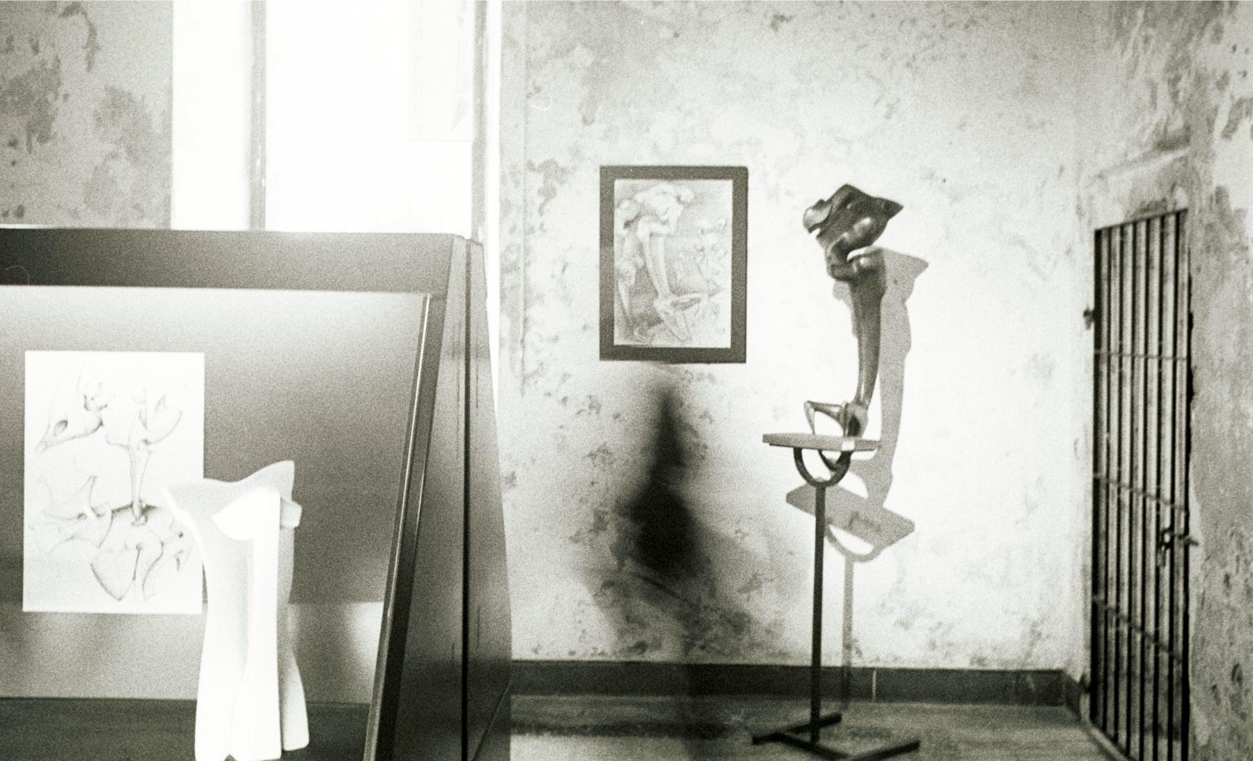 Esposizione Soncino 2004- foto Gigi Pedrali008