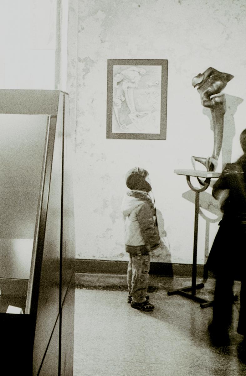 Esposizione Soncino 2004- foto Gigi Pedrali013