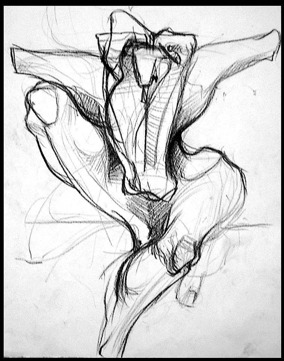 studio figura 2000